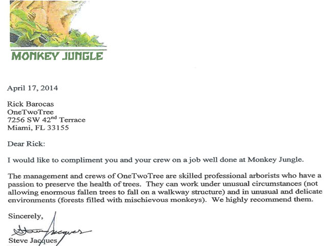 Monkey Jungle Thank you letter
