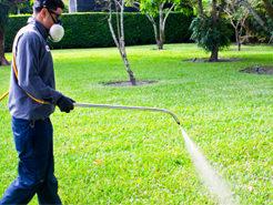 spraying herbicide