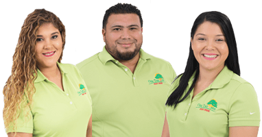 one two tree pest control team
