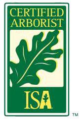 Certified Arborist Richard Barocas