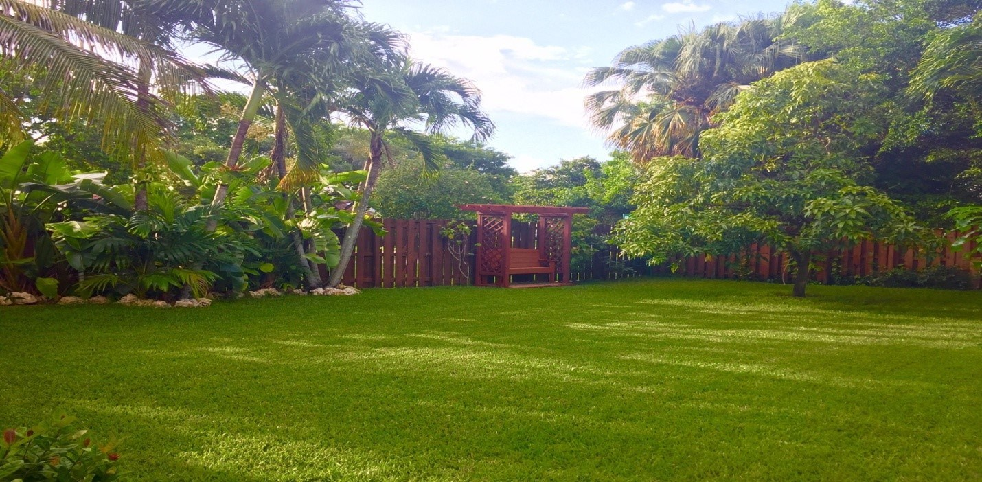 Lawn of the week winner in Broward County, Florida