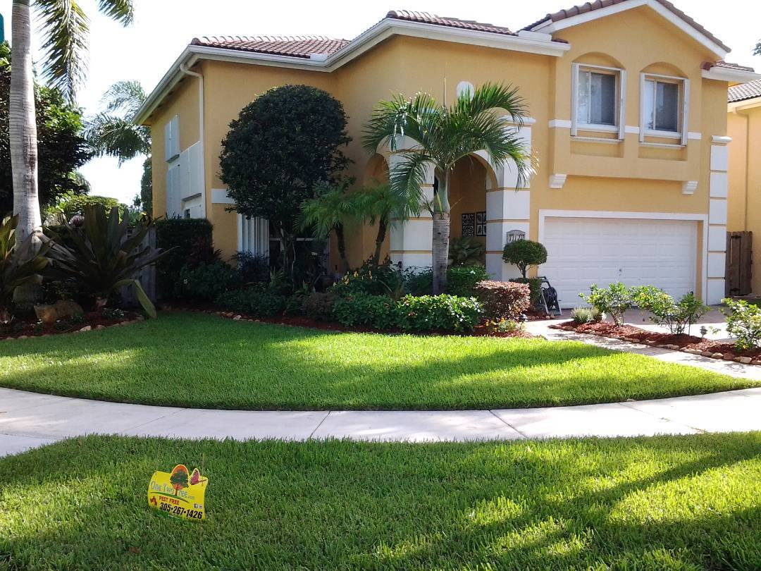 Lawn of the week winner Miami,FL