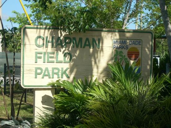 One Two Tree helps rejuvenate Chapman Field Park