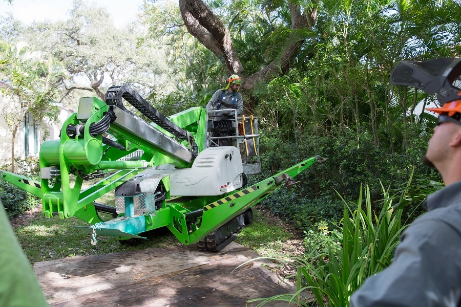 Tree trimming services in Miramar like One Two Tree use the latest equipment to provide the best service.