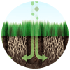 Aeration permits fertilizers and water to move easily toward grass roots.