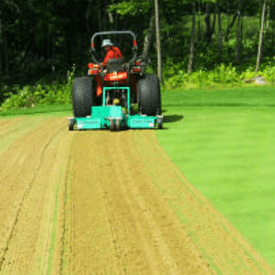 Verticutting is a special type of grass cutting for Florida.