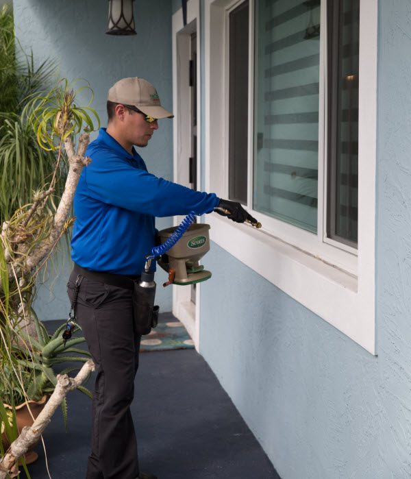 A Coral Gables Exterminator will carefully examine the exterior and interior of your home for pests.