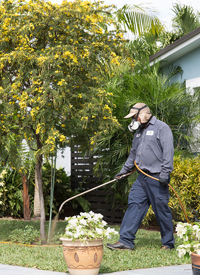 Efforts to control weeds in South Florida are ongoing.