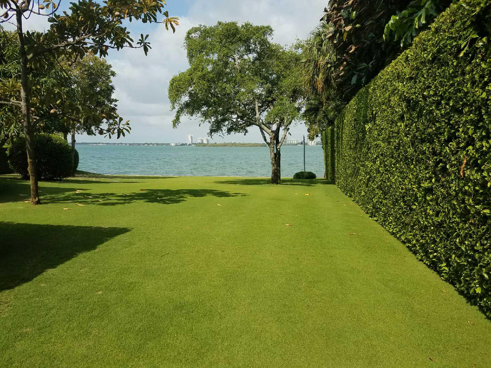 One Two Tree lawn care in Miami will result in a beautiful lawn.