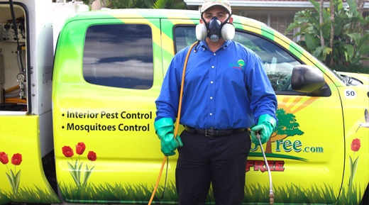 Mosquito control in Miami used by One Two Tree.