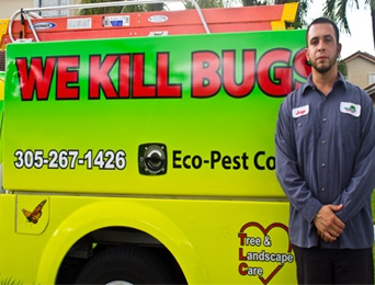 Rodent Control: Rat Removal & Mice Exterminator - One Two