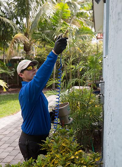 We provide a free estimate for pest control treatment.
