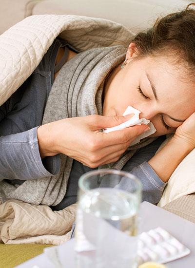 Pests can cause human illness.