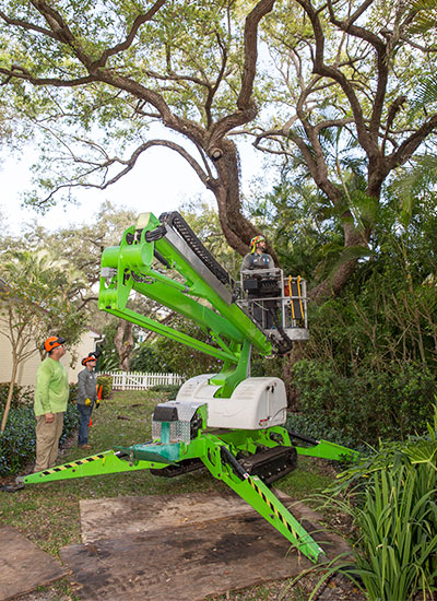 It is much safer to call a service like One Two Tree to remove a tree than to attempt it yourself.